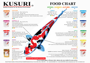 Kusuri Food Chart 2014 copy