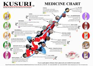 Kusuri medicinal chart 2014 copy